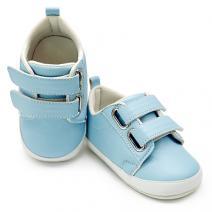 taylor blue